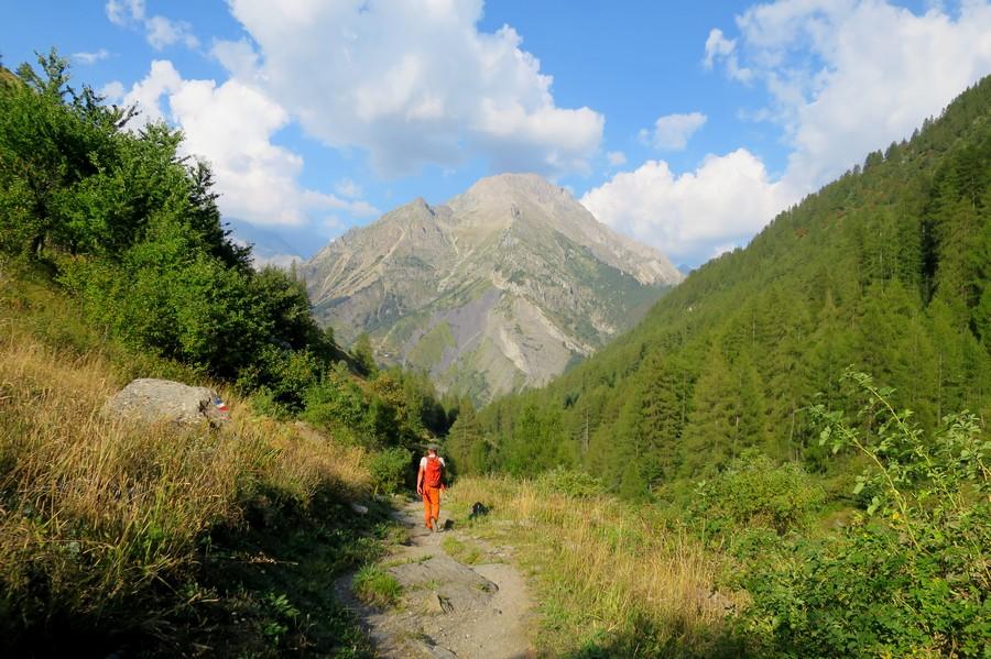 randonnées familiales Champsaur accompagnateur montagne nature