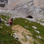 randonnée géologie Dévoluy obiou galets marmottes montagne